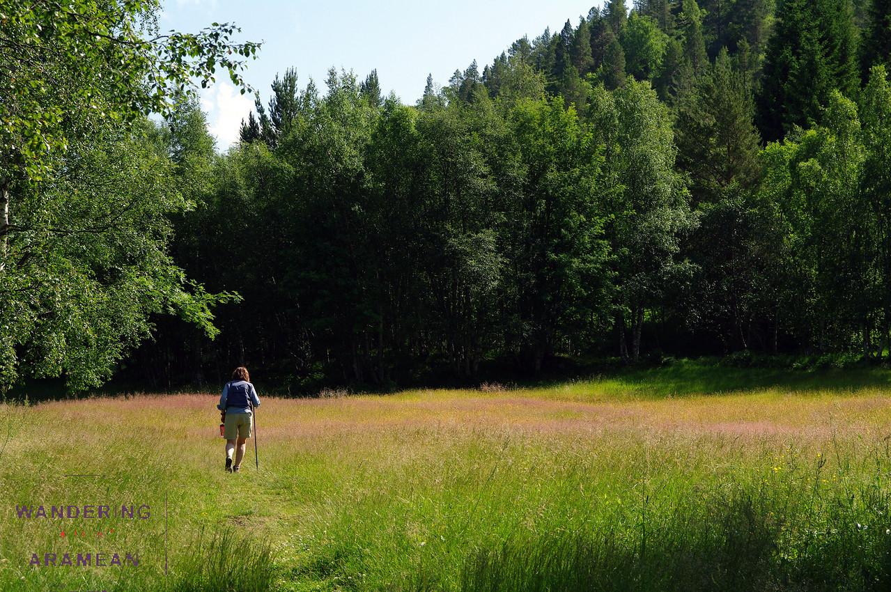 Hiking through the fields around the farmhouse