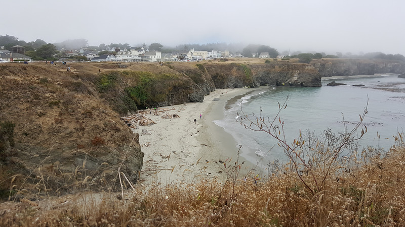 Foggy day in Mendocino