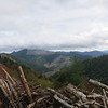 The top of the ridge was in an active logging area; I was glad it was a weekend, so I didn't have to deal with log trucks.