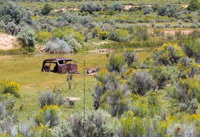 _N9A9107 Rusty car frame in lake