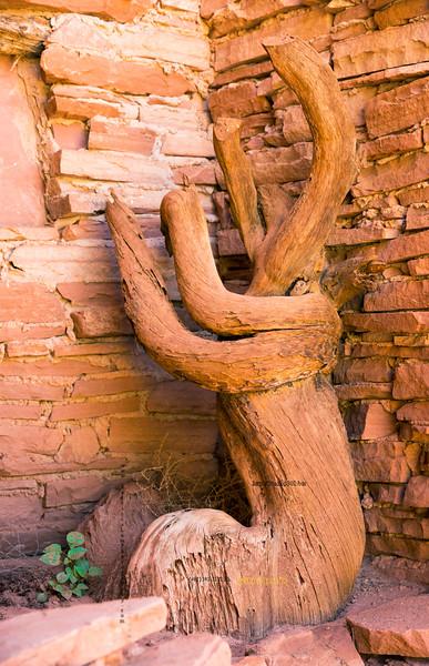 _N9A9054 tree & bricks at mine