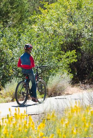 _N9A9153 texting_biking