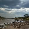 Kenia - Masai Mara