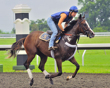 Keeneland Race Track, Lexington KY, morning workouts, June 2011