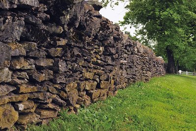 Typical stone fence found in Kentucky.
