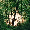Cedar Sink - Mammoth Cave National Park, Kentucky - May 1995