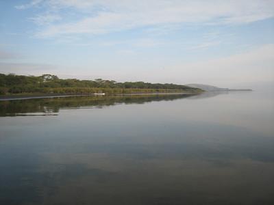 Lake Naivasha shoreline.