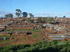 View of Kibera slum from my friends Dan and Chris's house (odd view, to be sure).