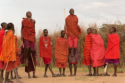 Masai warrior dancing and jumping, Kenya.  This is the jump off.