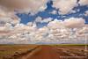 Road Through Salt Pan