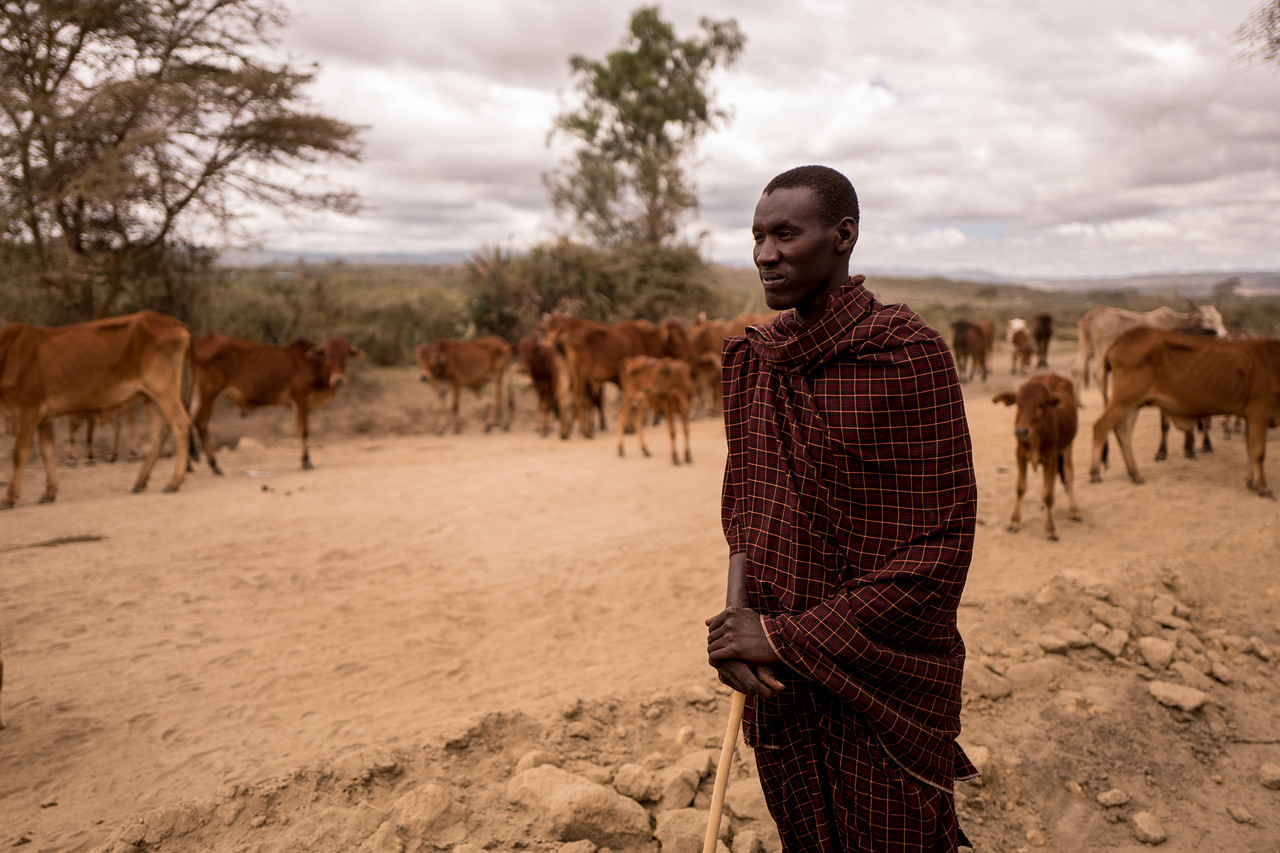Masai Shepherd