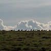 Almost sunset at Masai-Mara