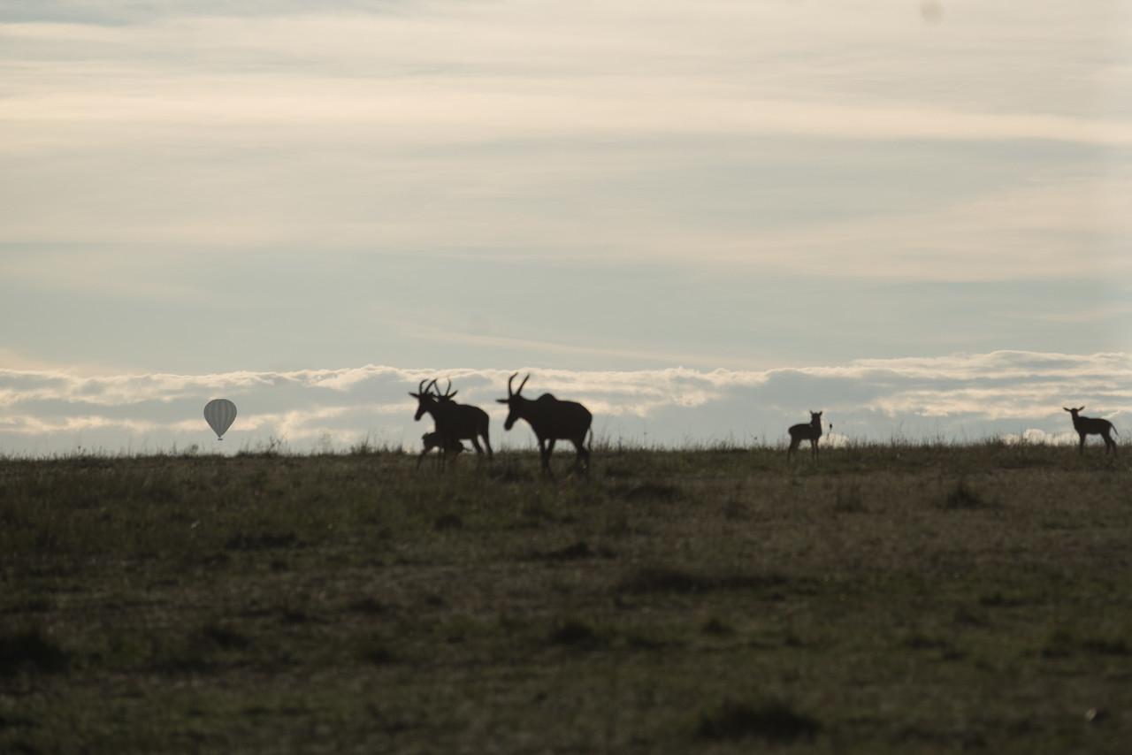 Sunrise at Masai-Mara