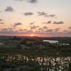 Tana Wetlands