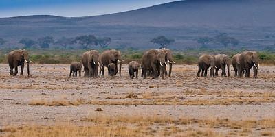 Kenya_D3C3567