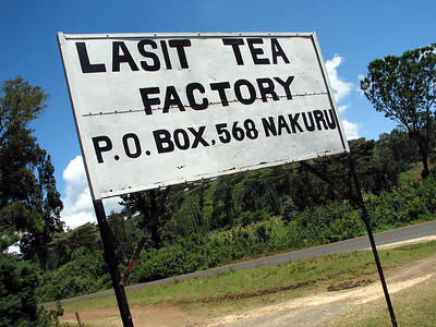 Lasit Tea Farm