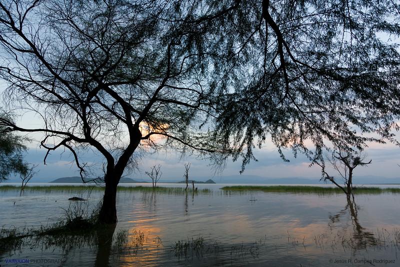 Dusk at Lake Baringo
