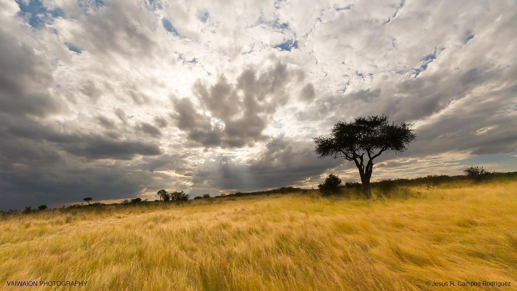 The skies over Masai Mara (8)