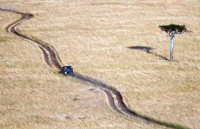 View of Masai Mara from hot air balloon