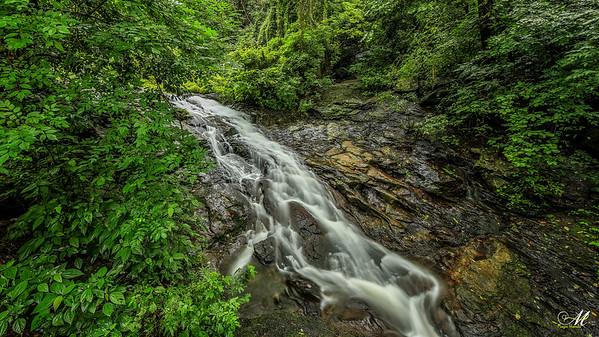 Cascade- Nelliyambathy