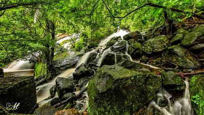 Waterfall- Nelliyambathy