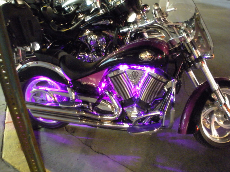 LOTS of motorcycles at Fantasy Fest, and this one was the most eye-catching this night.