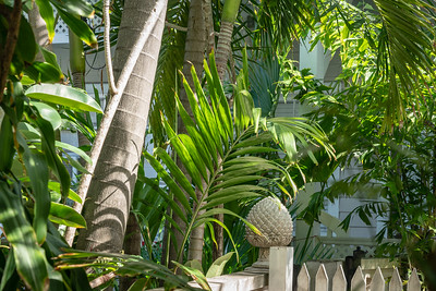 Staying at Coco Plum BnB