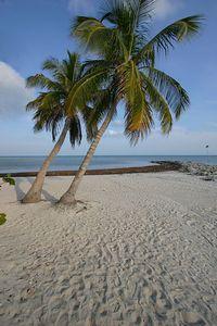 SM Beaches4247