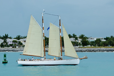 A Random Sailboat arriving with us