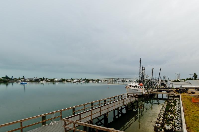 Shrimp Fleet at Ft. Myers Beach