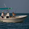 "Female Angler fighting a large Tarpon, Marathon Florida  <a href=""http://www.wklein.smugmug.com"">http://www.wklein.smugmug.com</a>"