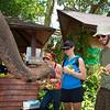 Elephant rides, The Jungle House Motel, Khao Yai National Park, Mu Si, Thailand