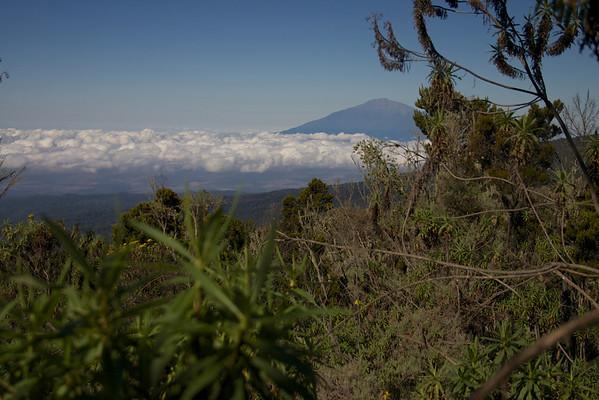 Kilimanjaro 2005