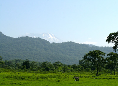 Kilimanjaro 2012
