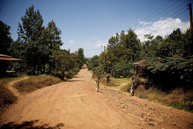 Road at the foot of the Kilimanjaro, Tanzania.