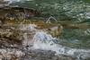 Water from Lake Ontario washing over rocks at Shingle Beach.