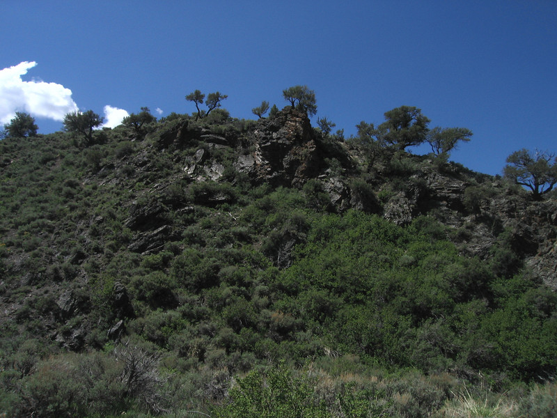 This ridge is just above the place in Kingston Canyon where we scattered my Dad's ashes.