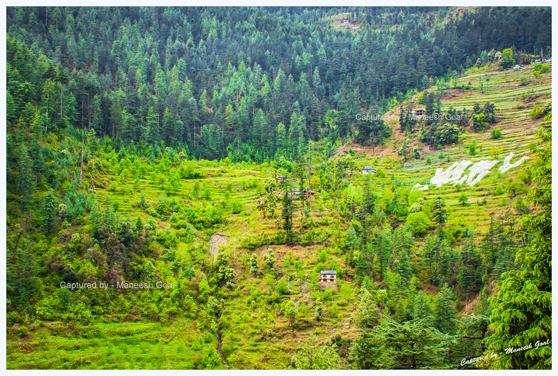 Woods and fields in Banjar region, Tirthan Valley