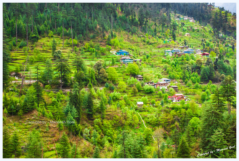 Cluster of traditional Himachali houses and fields in Banjar region, Tirthan Valley