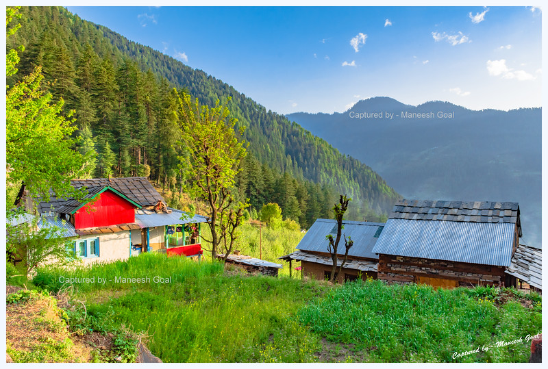 Stunning view of Deodar forests, traditional Himachali houses and fields. Chehni