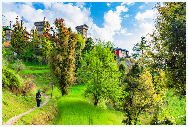 The final lap. Chehni Kothi (on the right) and Dev Bhandar (left) while traversing through an orchard. Chehni Kothi, a tower temple cum fort, is believed to be 1500 years old and is built entirely of stone and wood in the traditional Himachali Kath-Kuni architectural style. It was originally 15 storeys tall. An earthquake in 1905, however, destroyed its top five floors. Chehni Kothi is considered the tallest heritage structure in Himachal Pradesh. According to locals, the twin towers are residences of Gods and are stocked with ancient treasure. Consequently, they don't permit entry of outsiders inside either of the two towers.