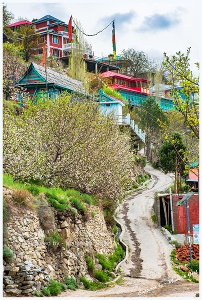 Fairytale village of Pangi.