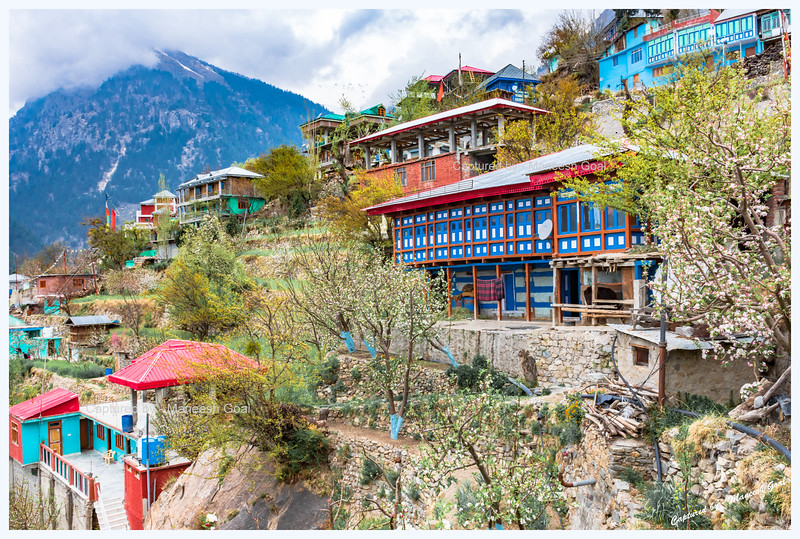 Colourful Pangi village.