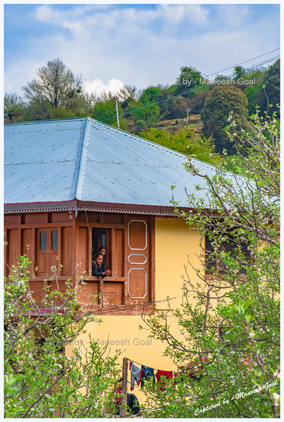 Cottage amidst apple orchards on the Rampur - Mashnoo - Sarahan Road