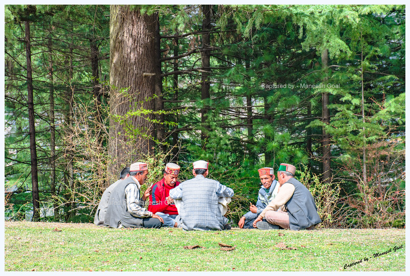 Playing cards - a popular pastime in Himachal. Shangarh, Sainj Valley.