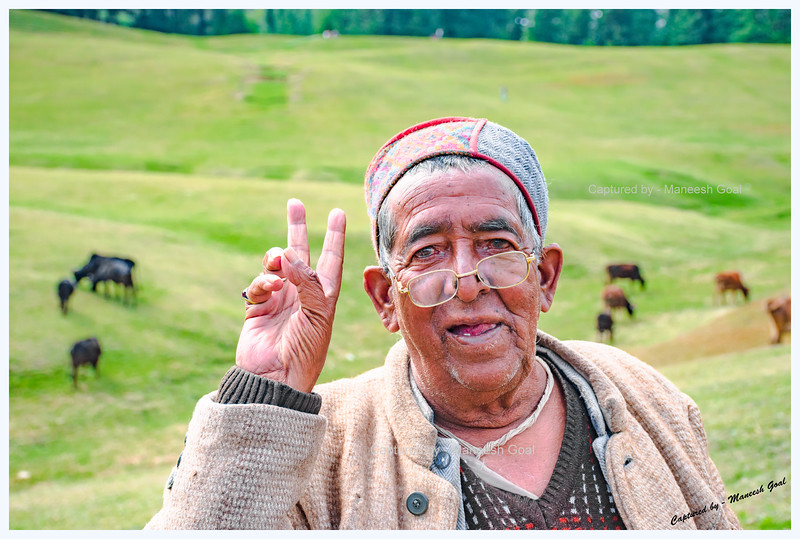 A friendly shepherd at Shangarh meadow, Sainj Valley.