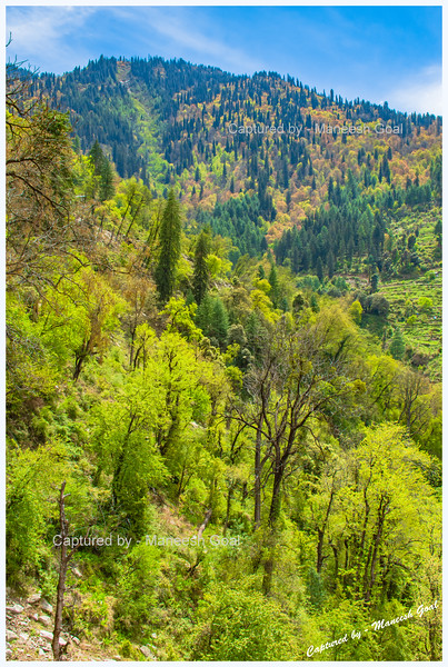 Colourful Sainj Valley