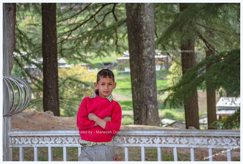 Kid at Shangarh meadow, Sainj Valley