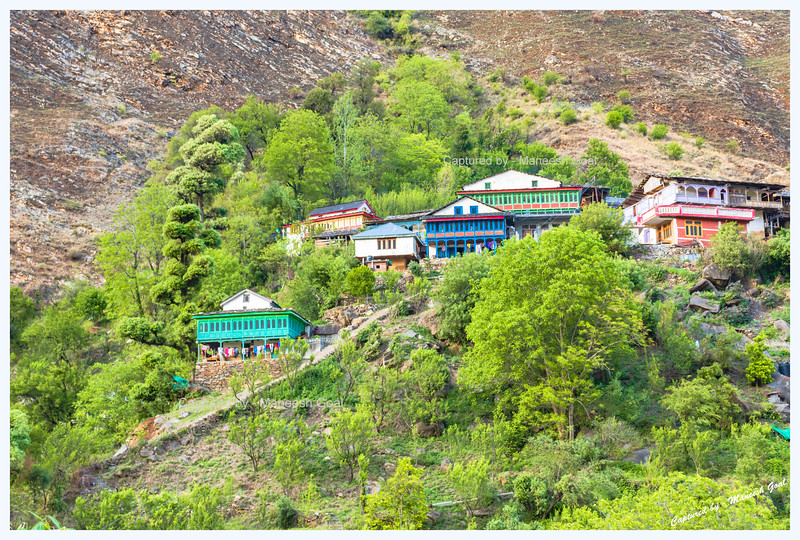 Cluster of traditional Himachali houses in Tirthan Valley