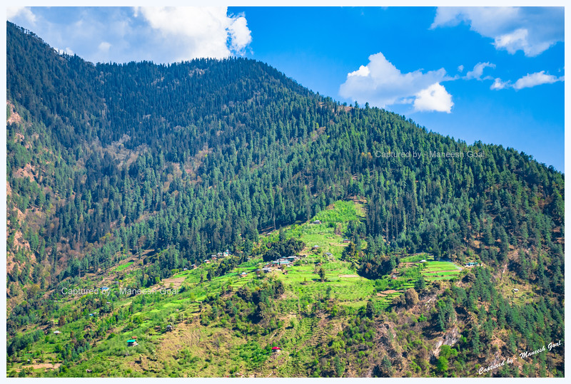 Pretty scenes on the mountain opposite Pekhri village